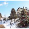 もみの木に雪景色も…欧州風のクリスマス 11月3日から六甲ガーデンテラスで