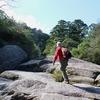 一生に一度は行きたい屋久島の旅 ~白谷雲水峡トレッキング編
