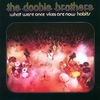 Doobie Brothers - What Were Once Are Now Habits:ドゥービー天国 -