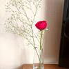 グレーなステイホームに彩りを添える花と花瓶
