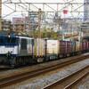 11月29日撮影 東海道線 平塚~大磯間 貨物列車2本とその他もろもろ
