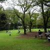 ミモザ・ガーデンの日記 庭園美術館