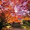 別子銅山での「餅つき」の思い出