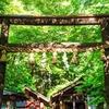 新緑の京都 野宮神社