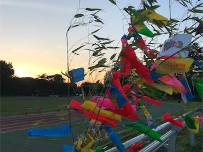 七夕ランニング〜大宮八幡宮、和田堀公園陸上競技場、夕日が丘広場〜