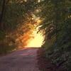 「光の差す方へ」いける魔法の言葉