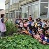年中 冬野菜を育てよう!