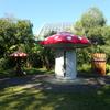 府立植物園きのこ文庫。