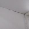 部屋の壁に発生した黒いカビをカビキラーでやっつけた件