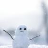 東京で雪が降った時に雪国育ちの人が思うこと
