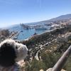 南スペイン、両極端な2面性を楽しむ!マラガ編:①〜balmyな1日〜