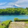 下和田調整池(静岡県裾野)