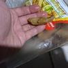 【これは…汗】謎のTempuraを食したら / パラワン島