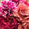 造花ってどうなの?近年、クオリティーが上がってきた質の良い造花。
