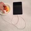 リンゴとジンジャエールで家電を充電これぞサバイバル充電自然の充電器だ!