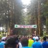 第12回 日光杉並木マラソン大会