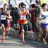東京マラソン2020に向けて、強化レース全て終了。冬シーズンを振り返っていく[ハーフPB更新]