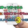 iPod touch買おうとしてる人要注意!旅に持ってくなら絶対SIMフリーiPhoneをオススメしたい3つの理由