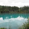 30日の朝活【後編】曇り空の青い池と美瑛の風景そしていつもの朝食バイキング