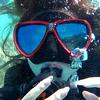 【高校時代】パラオでダイビング資格取りに行ったのが楽しすぎたので振り返ってみる