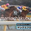 サラブレッドカード95 082 第9回東京中日スポーツ杯根岸ステークス ヤングエブロス