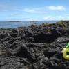 【ハワイ留学】現役大学生の毎日日記5月31日