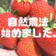 2021 野菜作りスタート!微生物を活用した自然農法に挑戦!【Vlog】
