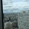 高いところに登って街を見下ろすと「この世界は俺のものだ!」って感情にならない?