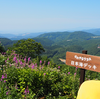 斑尾高原「かのやまテラス」で眺望と涼風を楽しむ/夏野菜収穫:百姓塾2018年8月