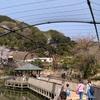 日本平動物園(18/03/29)【その3・フライングメガドーム・ふれあい動物園】