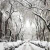 【おすすめ】冬に聴きたくなるラブソング5選