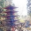 パワースポットが呼んでいる、室生寺五重塔。