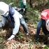 雨上がりの18日、日進市の北高上緑地で、親子ら38 人が恒例の里山体験イベント「タケノコ掘り体験」を楽しみました。