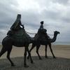 月の砂漠から九十九里浜へ