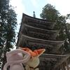 雪の残る奥の細道 羽黒山の五重塔と出羽三山神社に参拝