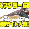 【チェイスベイツ】鳥型羽根モノルアー「スマグラー65」通販サイト入荷!