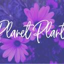 planetplants's blog 西洋占星術・自然療法・子育て