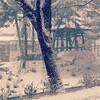 雪の降る日は鬼が笑う話