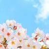 【239日目実績】6年春期講習1日目