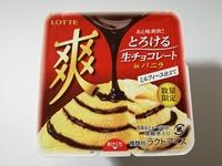 ロッテ「爽」とろける生チョコレートは、爽快なチョコバニラ。めちゃくちゃ美味しい!