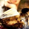 【読書】経済を身近に感じるためにオススメの10冊