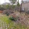 庭・剪定枝木片付け