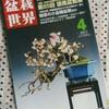 【感想】「盆栽世界 2011年4月号」 新企画出版局