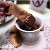 【Re:旅39日目①】バルセロナパス2日目!有名店のチュロスからの老舗チョコレート店。