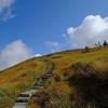 機織りの女神様が住まう山に秋の訪れを告げる草紅葉 @巻機山