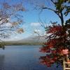 「秋の函館」行ってきた!