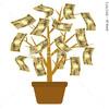 金のなる鉢植えの木
