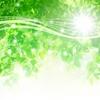 4月28日は「四つ葉の日」~四つ葉のクローバーは幸せの象徴?