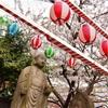 横浜石川町の濡れ地蔵の桜2019