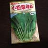 【ベランダ菜園】小松菜の種まき、ミニトマト、アボガド